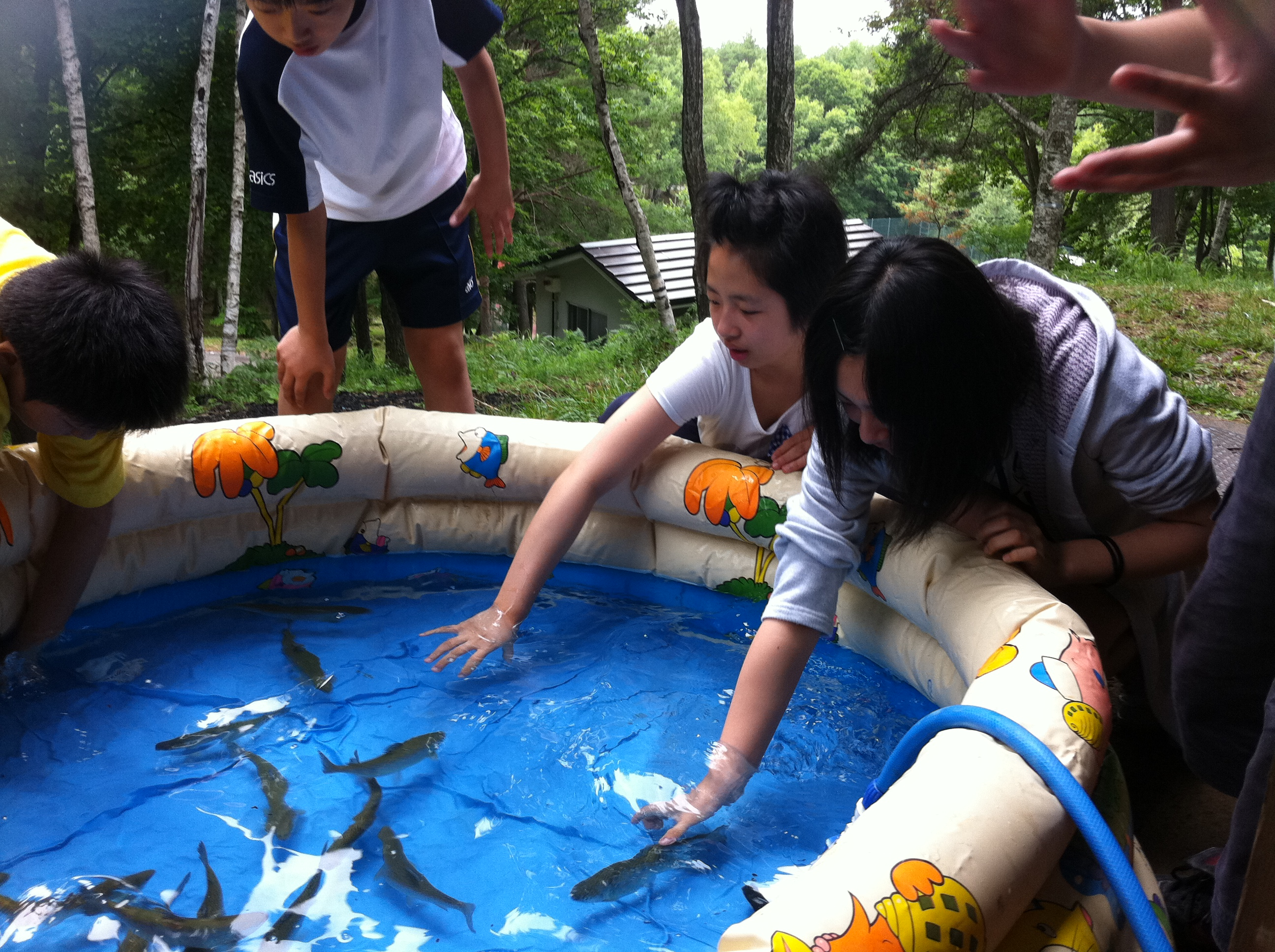 http://www.kodomonotsubasa.com/2011/07/27/0727bbq05.JPG